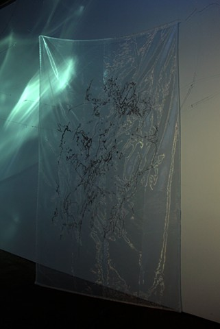 Contemporary drawing, Dimitra Skandali, Aggregate Space Gallery, Bay Area art, seaweed, sea grass, found strings, Indonesian monofilament, sound installation, embroidered sea grass, embroidering
