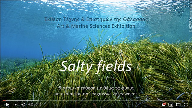 Salty Fields: A two-person show @Herakleidon Museum, in Athens, Greece, with Aggeliki Loi, curated by Nina Frangopoulou, Marine Biologist, with the contribution of Manolis Karterakis, Art Historian.