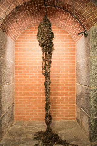 Hanging seaweed sculpture