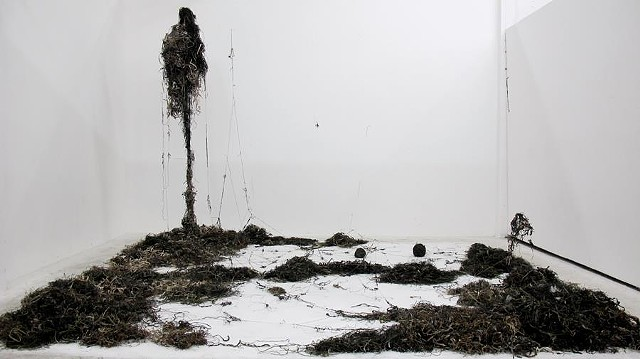 Dimitra Skandali, San Francisco Art Institute, Contemporary Art, seaweed, sea grass, San Francisco art, Pacific Ocean, Aegean Sea