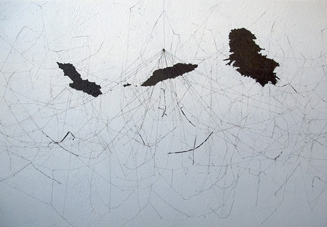 Dimitra Skandali, San Francisco Art Institute, Contemporary Art, seaweed, sea grass, San Francisco art, Pacific Ocean, Aegean Sea, Alyki, Paros