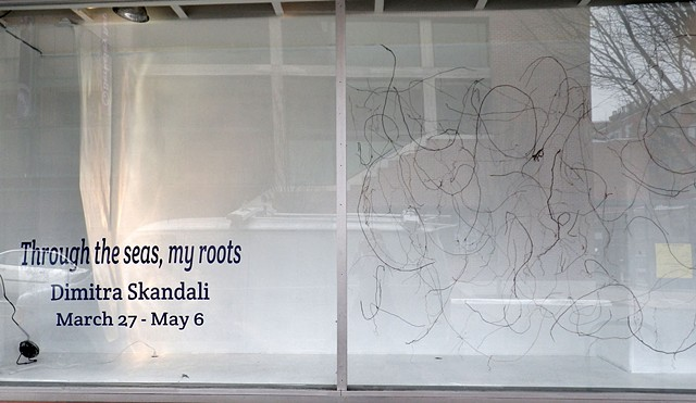"""""""Through the seas, my roots"""""""