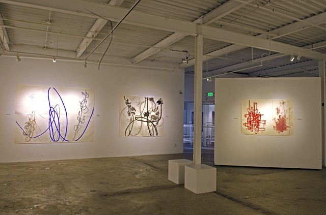 Rocio Rodriguez: Thirty Years on Paper at MocaGA Atlanta, GA 103 Works on Paper on exhibit.