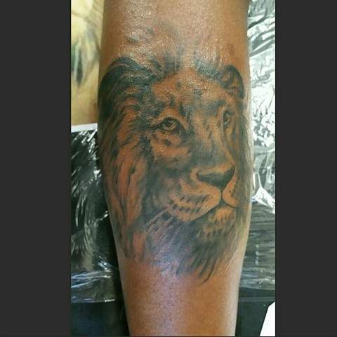 Black and Gray Lion Tattoo