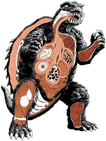 Gamera Kaiju anatomy