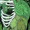 Swamp Thing anatomy