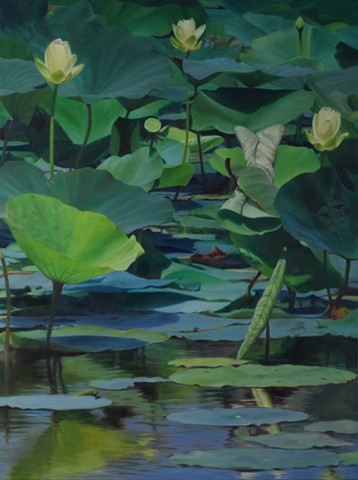 "Lotus at Shelby Farms, 2012, Oil on canvas, 40"" x 30"""