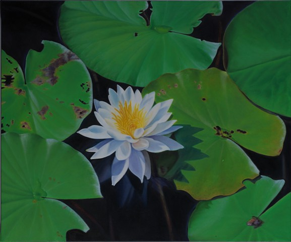 "Water Lilies III, 2010, Oil on canvas, 20"" x 24"""