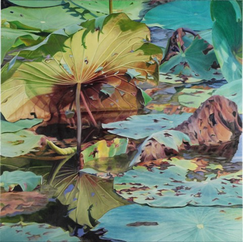 "Lotus Leaf, 2012, Oil on canvas, 30"" x 30"""