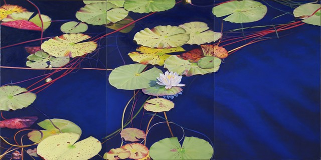 Water Lilies on Western Lake II