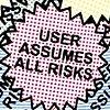 User Assumes All Risks