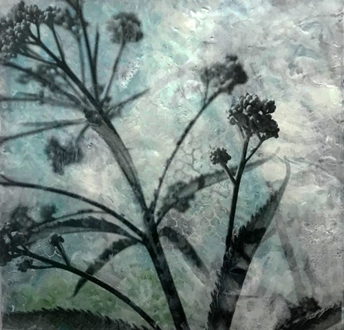 plants and flowers with black and white photography collage encaustic contemporary