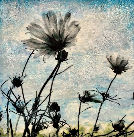 Contemporary photograph and encaustic painting pollinator plants