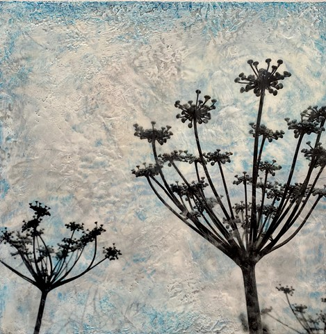 Queen Anne's lace original encaustic painting for sale with photo collage