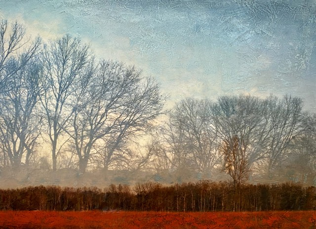 Contemporary landscape painting photography trees modern colorful