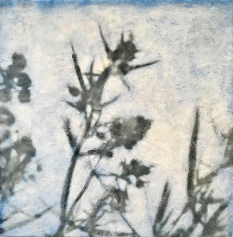 Encaustic photography and collage plants blue sky blur dreamy