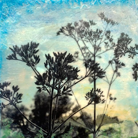 Encaustic painting original pollinator friendly plants landscape photography