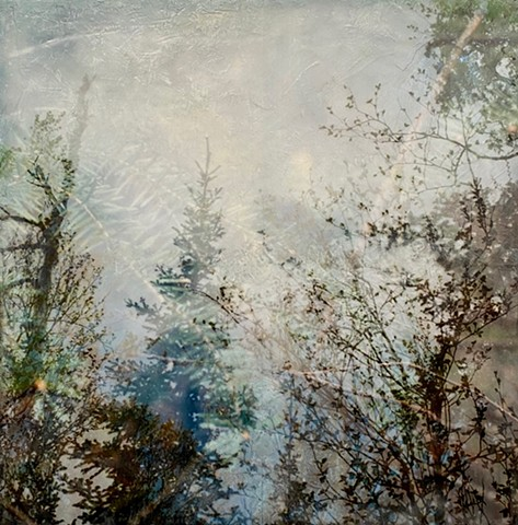Pine trees and landscape encaustic painting triple exposure photograph