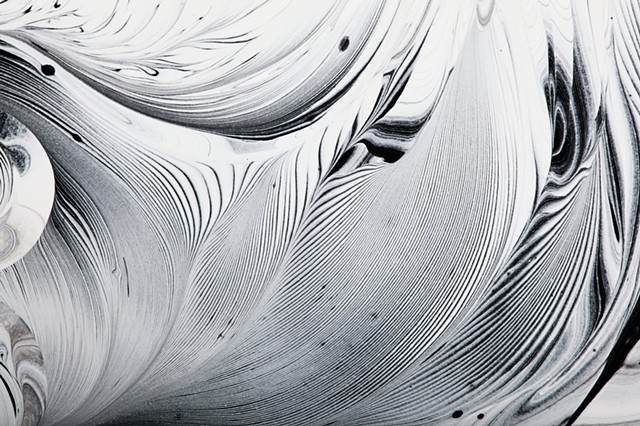 Abstract black and white painting of nature by Harrison Taylor