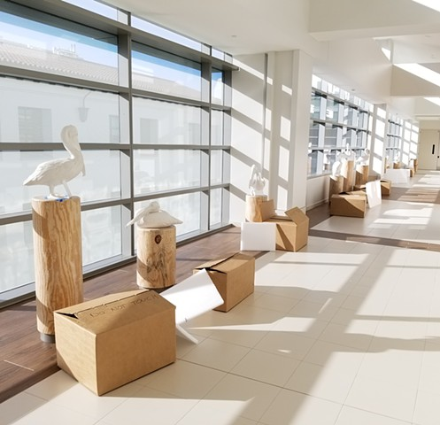 Pelican installation for Santa Barbara Children's Hospital