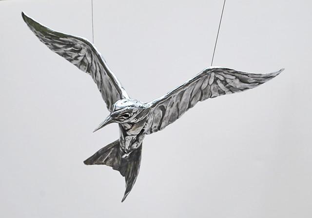LPCH PROJECT- California Tern prototype