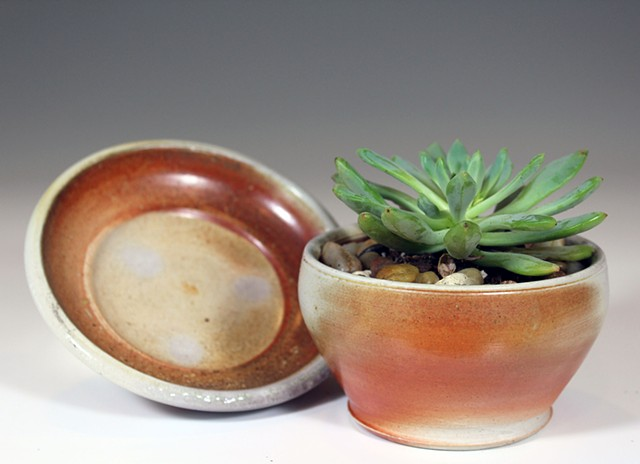 Wood Fired Succulent Pot