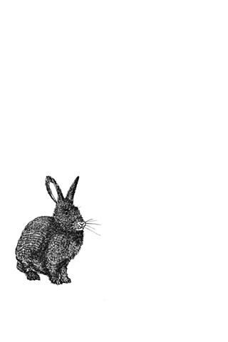 The Hunting Party Series, Hare. Illustration by Dani Green