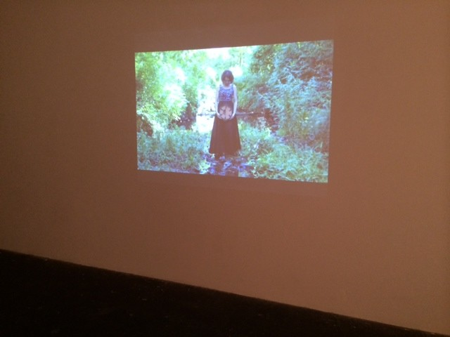 Art and the Ephemeral, Performance Art Landscape, Cultural DC Flashpoint, Shelley Warren, Installation, Moving Images