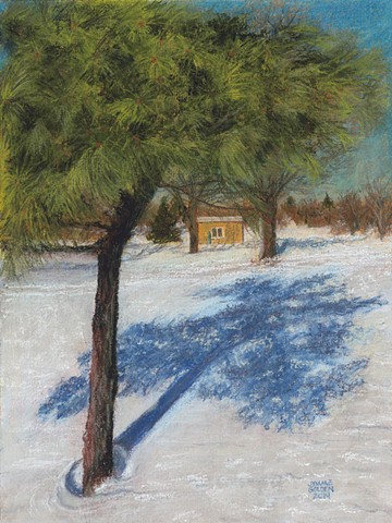 Minneapolis, winter, snow, landscape, Pine, Lake Hiawatha, shadows