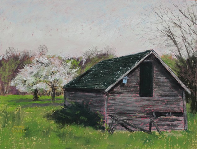 Old Building, Shed, Garden, Apple Blossoms, Spring, Minnesota