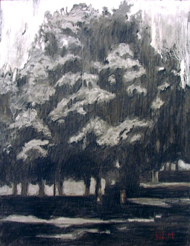 Charcoal on gessoed wood panel - Unframed