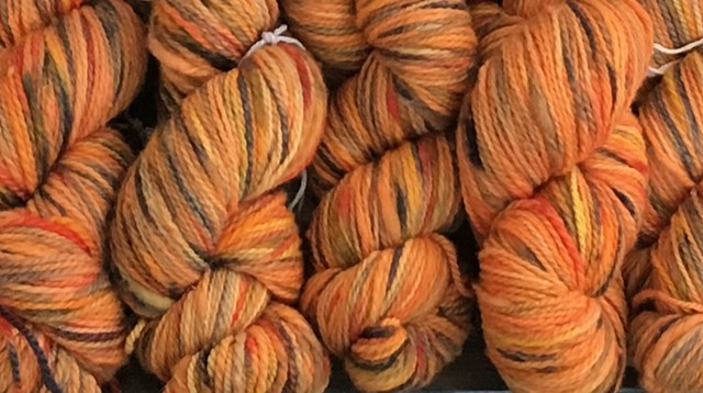 Hand Dyed New Mexico Wool Thick-n-Thin Worsted Weight Yarn Harvest (5 skeins available)