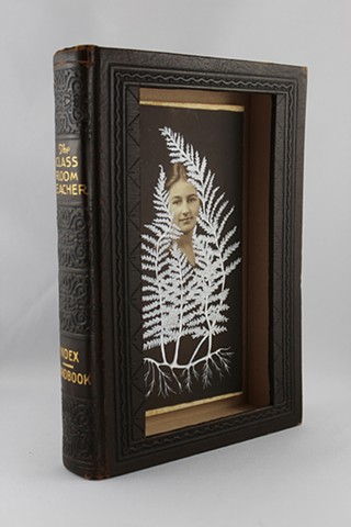 found book sculpture, found photograph, botanical drawing