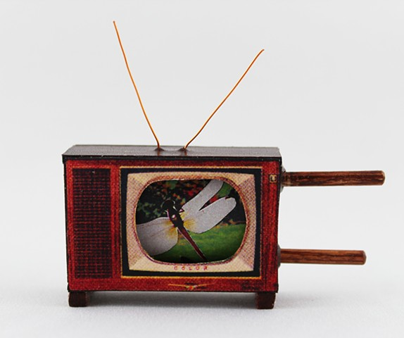 Insect Dreams: a miniature scrolling television book by Lesley Patterson-Marx