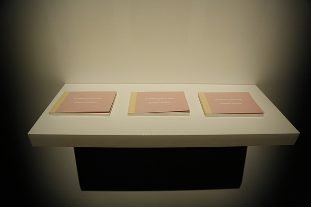 Installation documentation of My Nipples Aren't Pink in Gallery Two