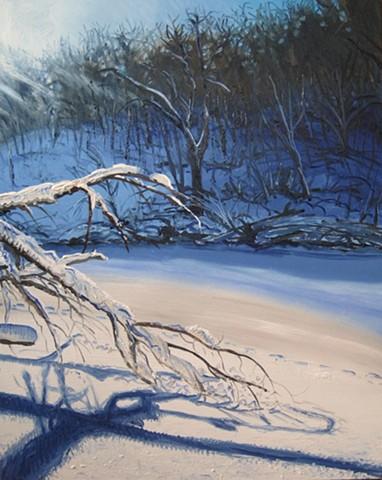 LeSueur River Snow
