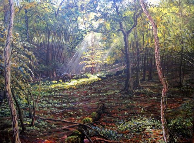 Rasmussen Woods (Portal)