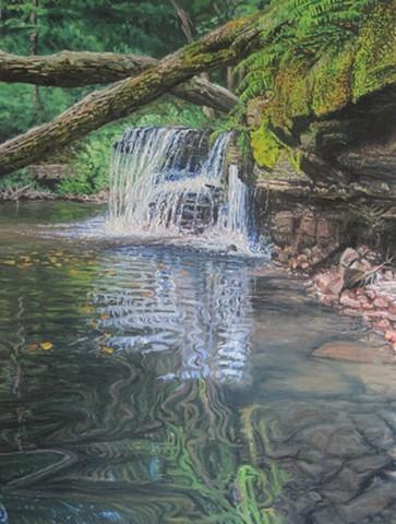 Caron Falls Reflection