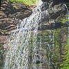 Minnejujuwaha Falls (Ferns)
