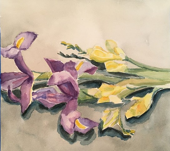 Iris and Freesias