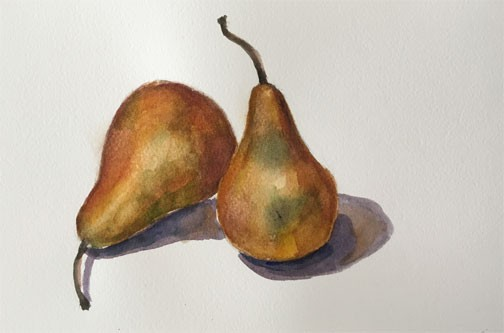 2 Yellow Pears