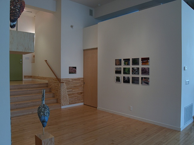 alternate installation view from Cut and Dry showing photo grid
