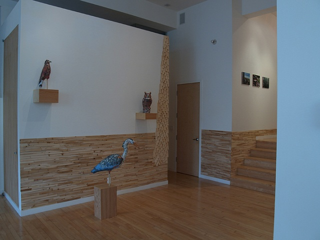 alternate installation view from Cut and Dry showing birds and shims