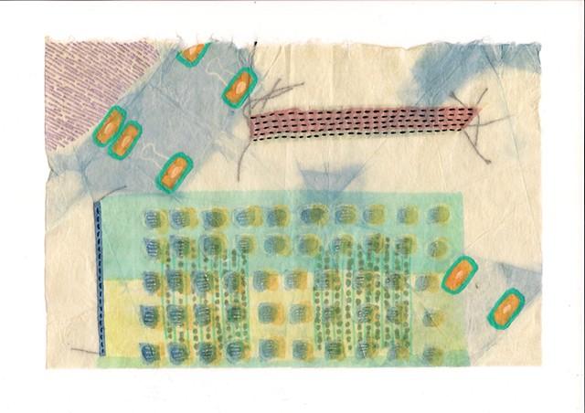 Indigo Tissue Experiment 11
