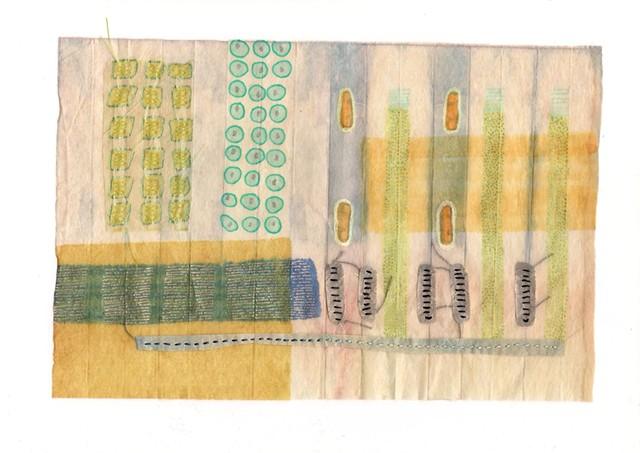 Indigo Tissue Experiment 10