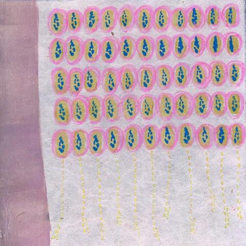 Chiri Drawing 1