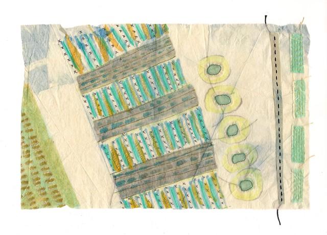 Indigo Tissue Experiment 06