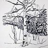Chickadee Tree