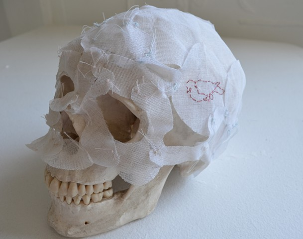 skullcap, extinction art, sculpture