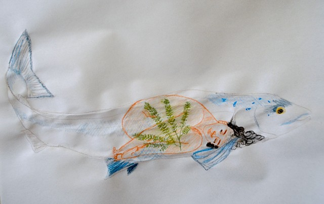 salmon, environmental art, interconnected species